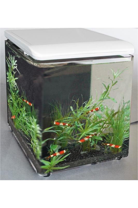 Akvárium Superfish Home 8  (bílé)