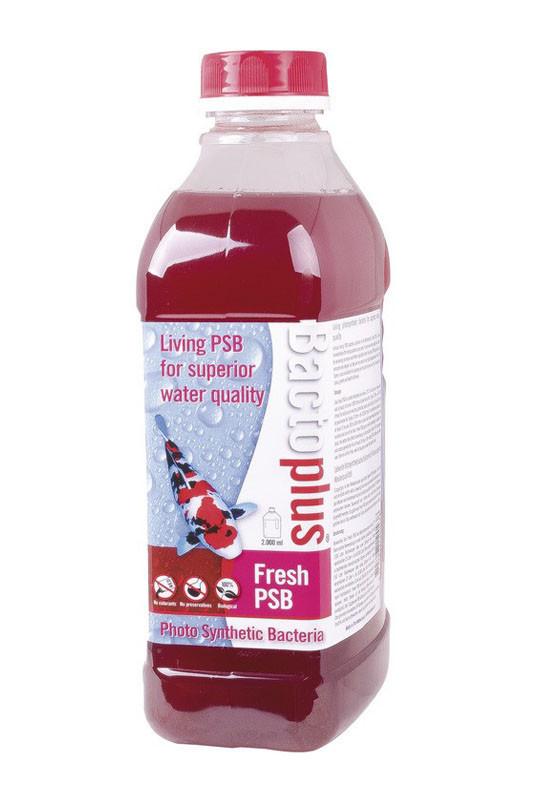 Bactoplus Fresh PSB 2L