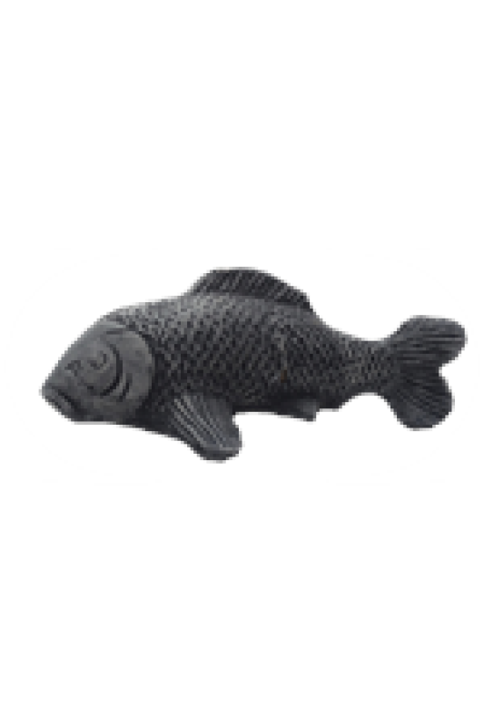 Ryba malá