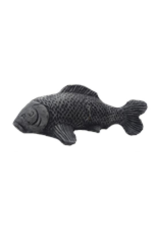 Ryba velká