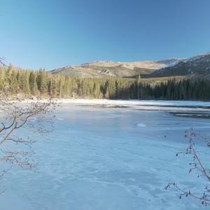Péče o jezírko - Zima